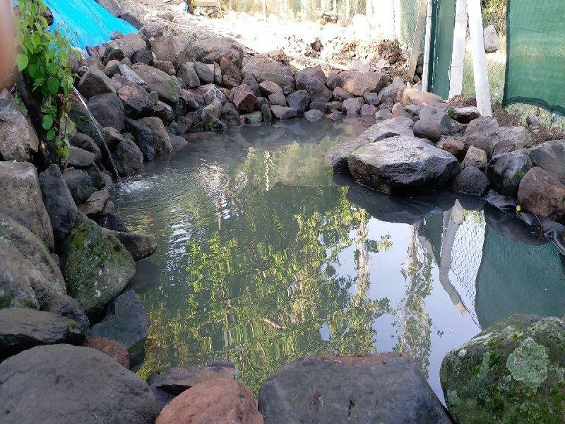 aldesanyapı-süs-havuzu